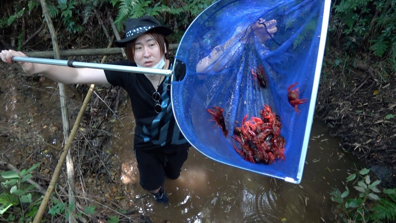 森の水たまりに激うま食材が沸いてたwww