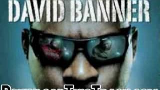 david banner - Cadillac on 22