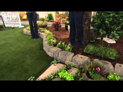 Cottage Farms Rainbow Magic Carpet Sedum with Sandra Bennett