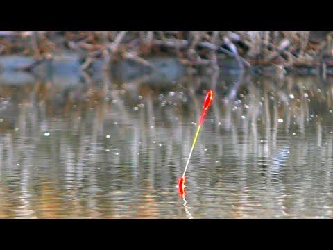 ТОЛЬКО ЗАКИНУЛ ПОПЛАВОК СРАЗУ ПОТАЩИЛО САЗАН  рыбалка на карася 2020