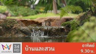 """บ้านและสวน : ช่วงสวน """" ธรรมชาติสร้างได้ """" วันที่ 7 ม.ค. 61 (4/4)"""