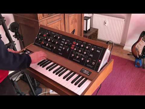Minimoog Funk Bass Sound (Evelyn