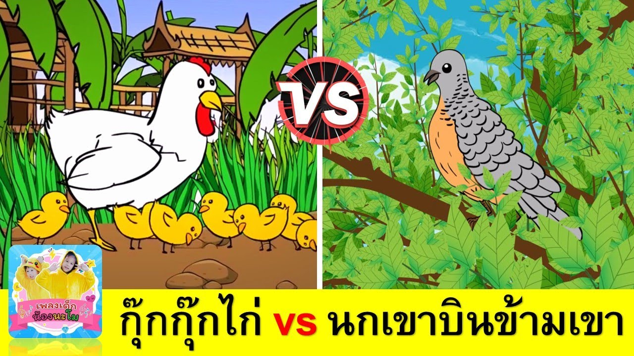 กุ๊กไก่ vs นกเขา   เพลงเด็กเรียนรู้เรื่องสัตว์   ไก่ กุ๊กกุ๊ก ไก่ + นกเขาบินข้ามเขา   สื่อการเรียน