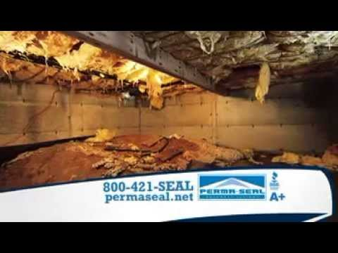 Crawl Space Contractor Chicago | Crawl Space Sealing | Perma Seal Basement  Systems