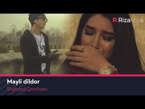 Shahzod Qarshiyev - Mayli Dildor | Шахзод Каршиев - Майли дилдор