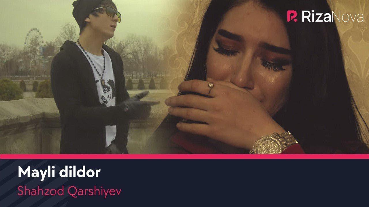 Shahzod Qarshiyev — Mayli dildor   Шахзод Каршиев — Майли дилдор