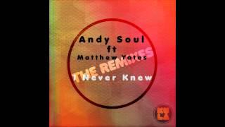 Andy Soul feat. Matthew Yates - I Never Knew (Symphonic