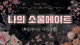 #타로맛집  나의 소울메이트 특징(배우자/동반자/친구/…