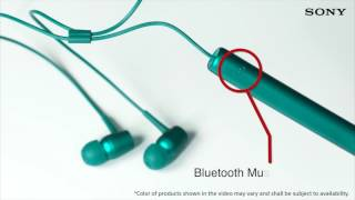 sony MDR-XB750BT Extra Bass Wireless headphones