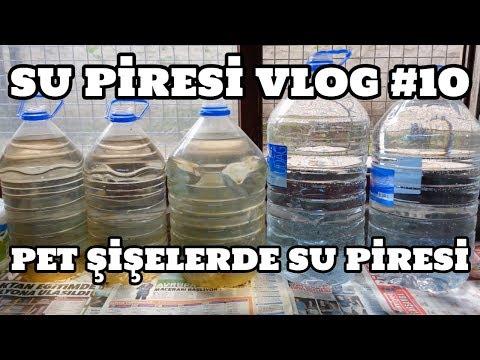 Su Piresi Vlog #10 (Pet Şişelerde Su Piresi)