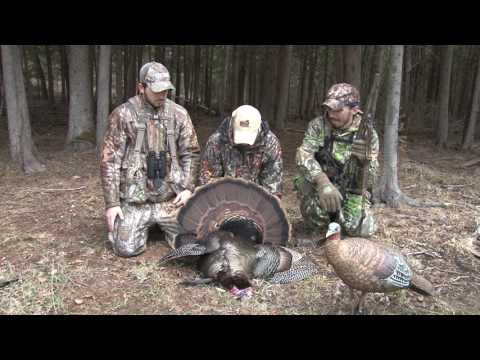 Discovering - Turkey Hunting, Tree Grafting, Furs