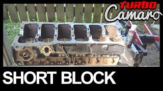 1967 Camaro - Chevy 250 Inline 6 Short Block Assembly