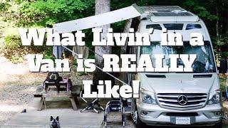 Living in a Class B Van | Roadtreking Across America