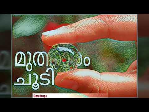 30 sec WhatsApp Malayalam status lyrical...