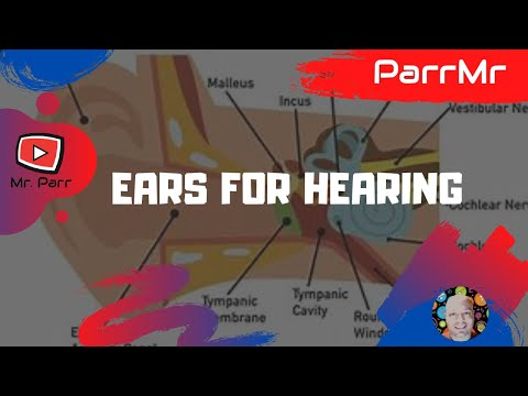Ears For Hearing Song