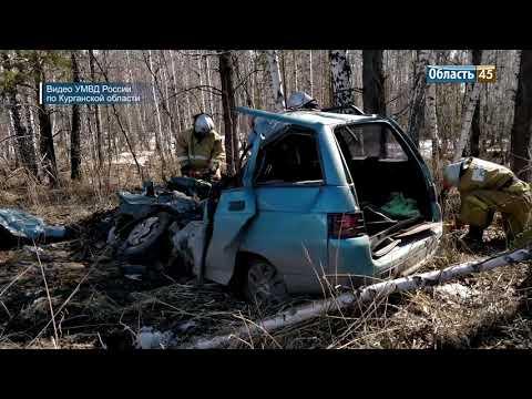 На трассе в Курганской области легковушка врезалась в грузовик. Двое человек погибли