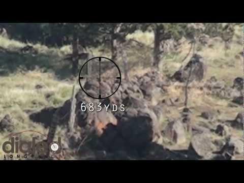 .338 - 683yd Rock Chuck - Long Range Shooting