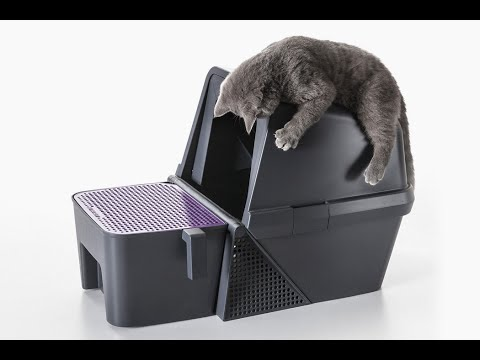 This Self-cleaning Litter Box Is A Flipping Joy For The Humans!