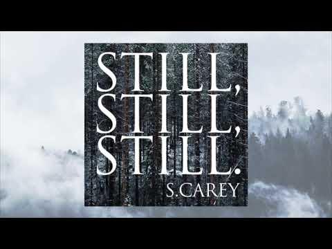 S. Carey  Still, Still, Still