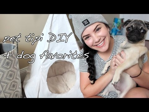 easy-affordable-dog-tipi-diy-&-puppy-favorites-and-essentials-ft.-chubby-the-pug-|-laurie-martel