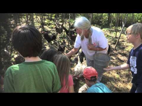 Community Farm of Ann Arbor visit - Rudolf Steiner School of Ann Arbor 2nd Grade