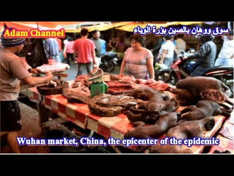Wuhan Market,China #Focus of the epidemic #Corona virus #Challenge to complete the video