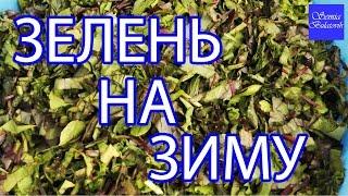 Влог. Заморозка зелени на зиму. Салат из листьев свеклы, щавеля и пекинской капусты на зиму