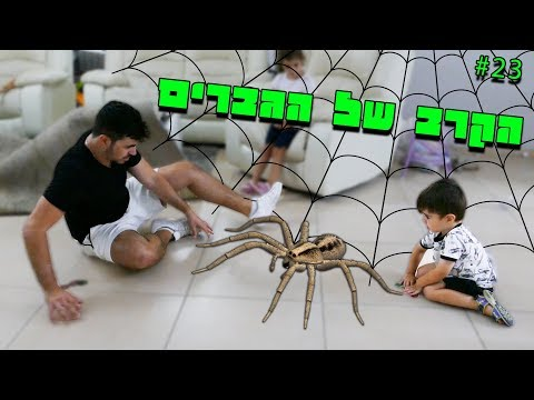 הבאנו עכביש לבית !