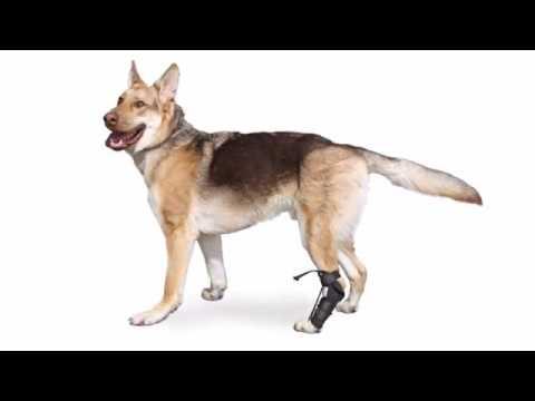 No-Knuckling Training Sock Instructional Video