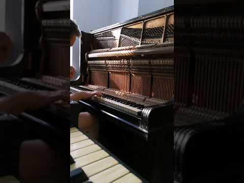 T betting pianinos julie bettinger facebook