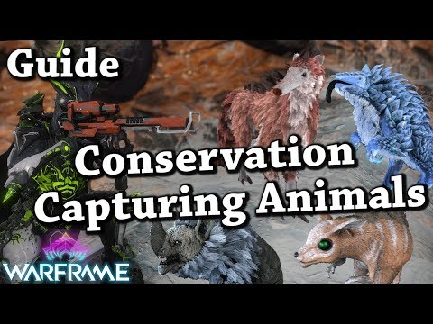 Warframe | Conservation/Capturing Animals In Orb Vallis & How To Get Floofs [Guide] thumbnail