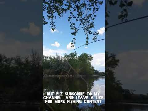 Going Fishing To Isleta Lakes