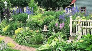 видео Цветник в ландшафтном дизайне: виды цветников