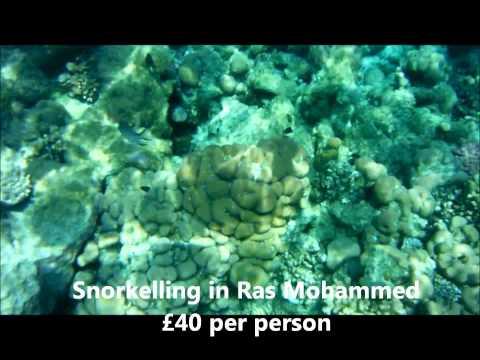 Sharm El Sheikh Travel Guide