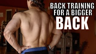 My Journey To A BIGGER Back (Raw Workout)