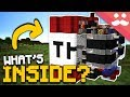 What's Inside a TNT BLOCK in Minecraft!?