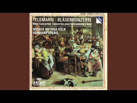 Telemann: Concerto In D Minor For 2 Chalumeaux, Strings And Basso Continuo, TWV 52:C1 - 2. Allegro