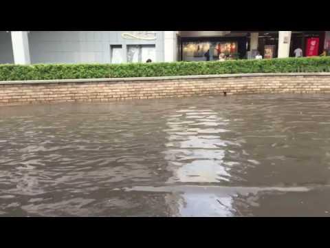 Inundación sobre carril lateral de López Mateos en Plaza del Sol