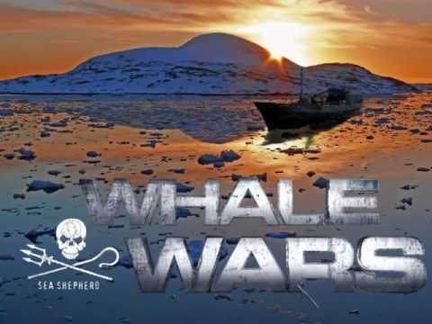whale wars theme song