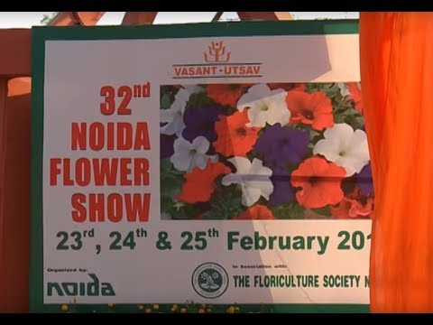 छत्त पर बाग़वानी - 32nd NOIDA Flower Show special