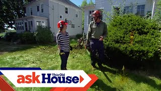 How to Remove Overgrown Foundation Shrubs