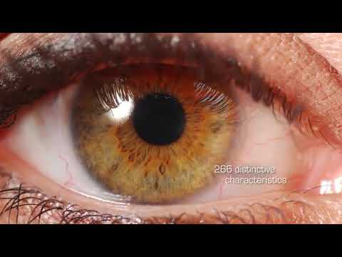 The Surveillance State 11 Biometrics Eyes, Fingers, Everything