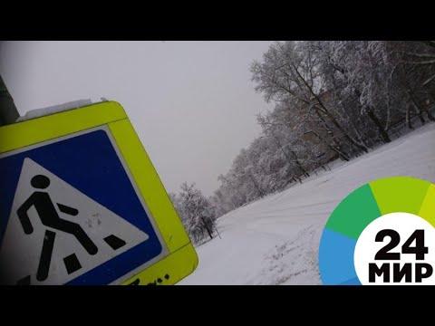 Смотреть фото Мокрый снег и сильный ветер: Москва во власти непогоды - МИР 24 новости россия москва