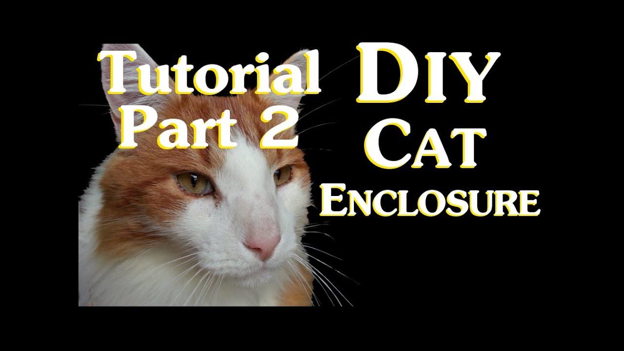 Diy Cat Enclosure Tutorial Part 2 Securing Cat Enclosure