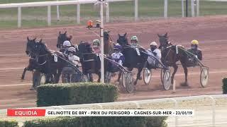 Vidéo de la course PMU PRIX DU PERIGORD