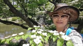 日本九洲褔岡小倉 2016年5月14日