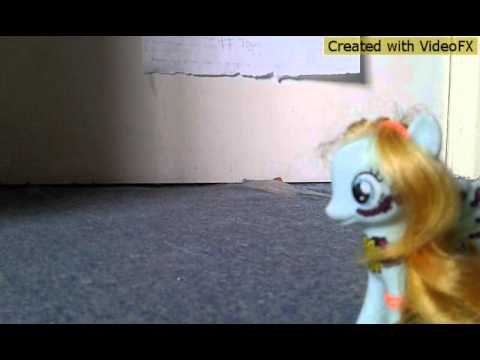 Mlp : pmv thousend years
