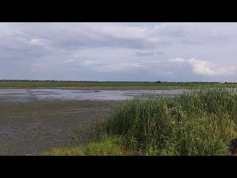 Goose Pond Fish And Wildlife Preserve