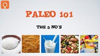 Getting Started on Paleo - Paleo 101