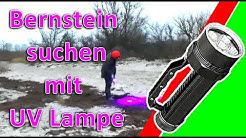 Bernstein suchen UV Lampe